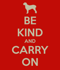 be-kind-and-carry-on-4
